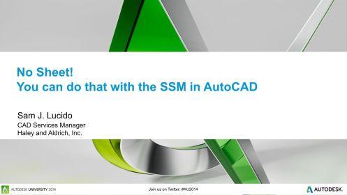 AC8218-No Sheet_SSM-AutoCAD_2014-1204